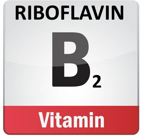 The Fat Burning Riboflavin (B2)